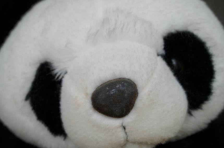 Panda Bear Face Scrapbook Kristian Laban