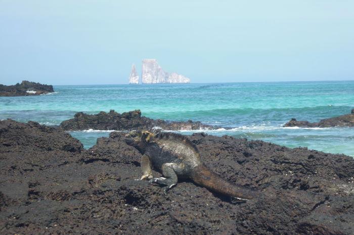 Galápagos Crucero Cerro Bruja Playa Iguana