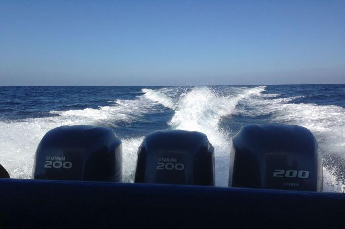 Galápagos Speedboat Gabi