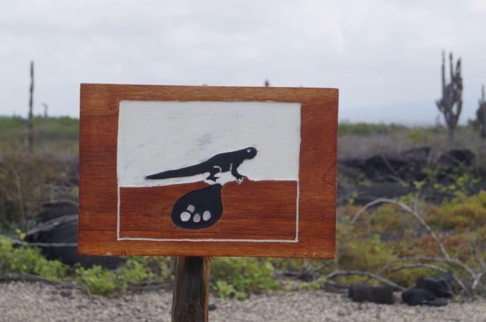 Galápagos Special Signpost