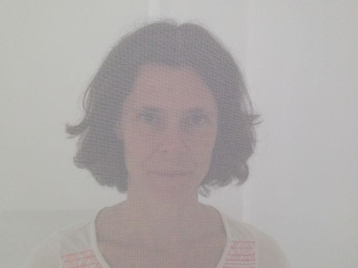 Barbara im Nylon Scrim 2013 von Robert Irwin, Villa Panza, Varese