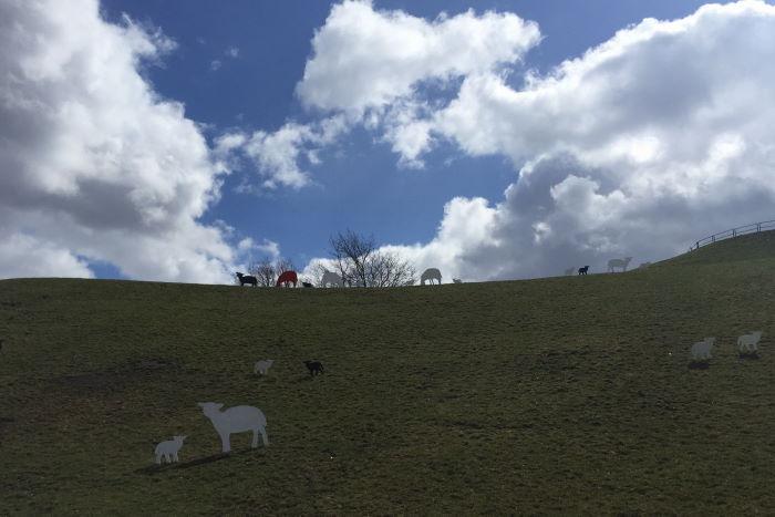 Munich Olympic Park Art Project Sheeps