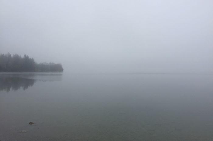 Kochelsee im Nebel