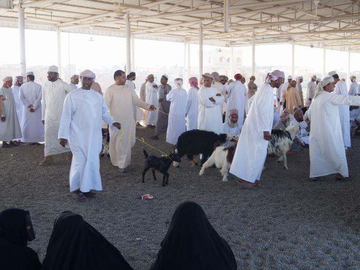 Ibri, Oman, Tierauktion