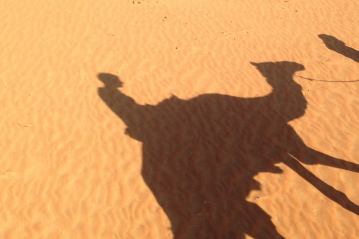 Oman Nomadic Desert Camp Camel Ride Shadow