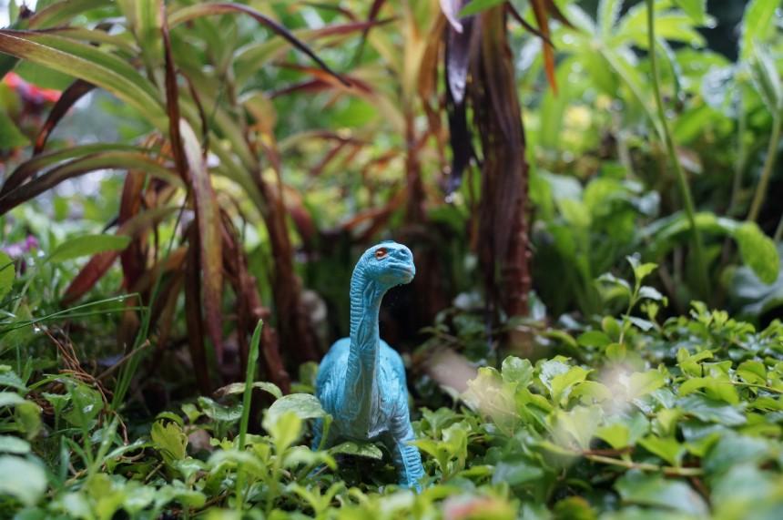 Dinosaurs Photo Series Kristian Laban