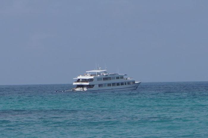 Galápagos Crucero Catamaran Millennium