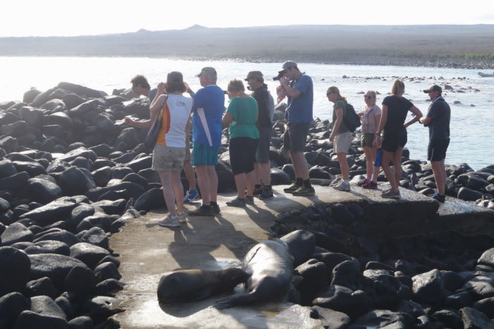 Galápagos Crucero Española Tourists