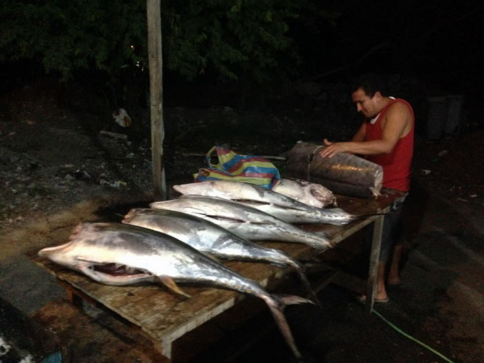 Galápagos Isla Isabela, Puerto Villamil Fish Restaurant