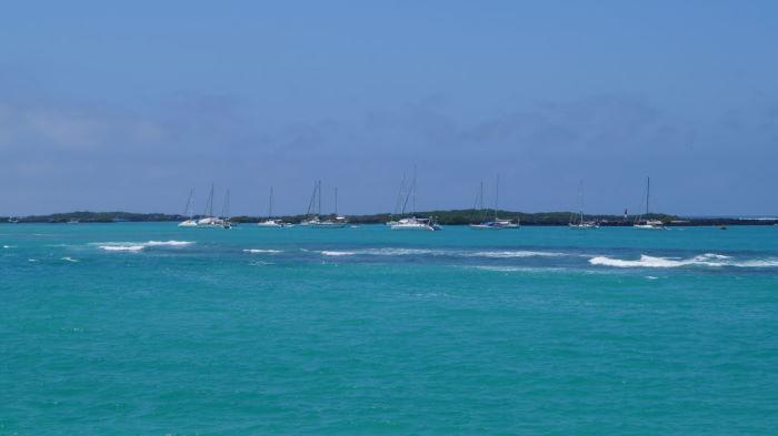 2014_04_03_Galapagos_Isabela (6)_700