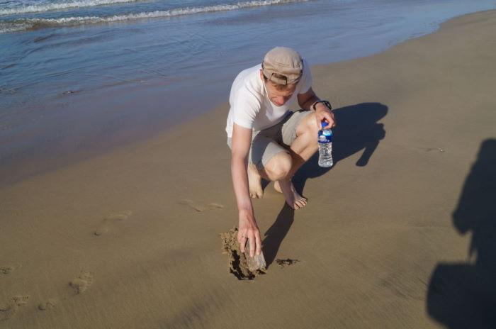Puerto Villamil Beach Saving Octopus