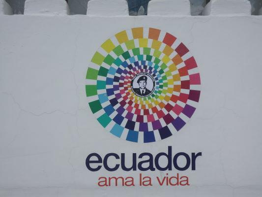 Ama la vida Bradley Manning Ecuador