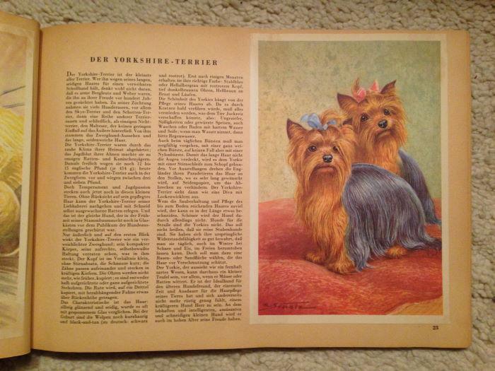 1960_Berlinder_Morgenpost_Hundealbmum (3)