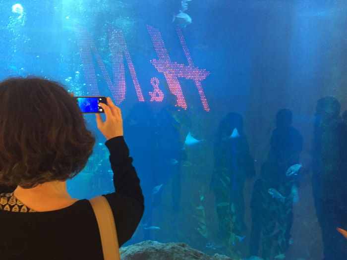 The Dubai Mall H&M Logo Aquarium
