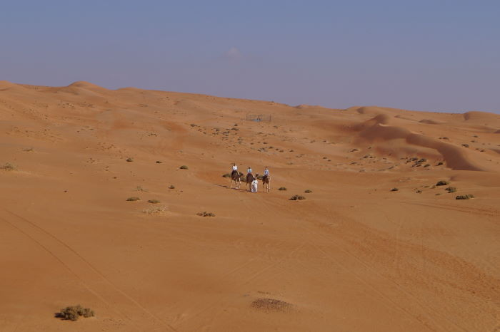 Oman Nomadic Desert Camp Camel Ride Wide